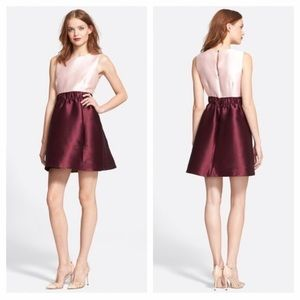 Kate Spade Swift Dress